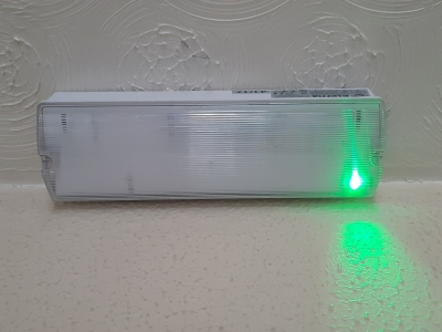 Emergency-Light-Green-LED.jpg